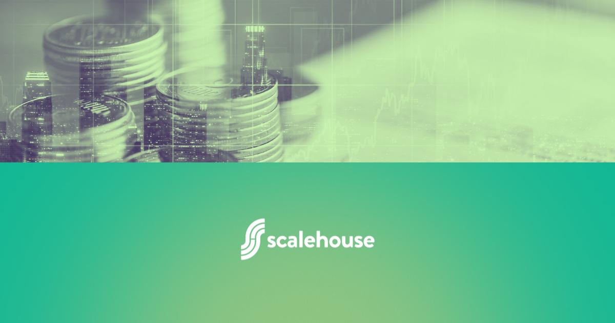Public v Private SaaS Company_Scalehouse